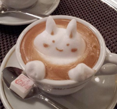 Latte Art Lapin