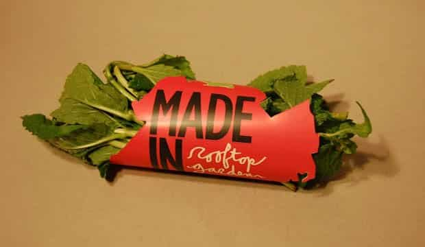 9 exemples de packaging food design et durables