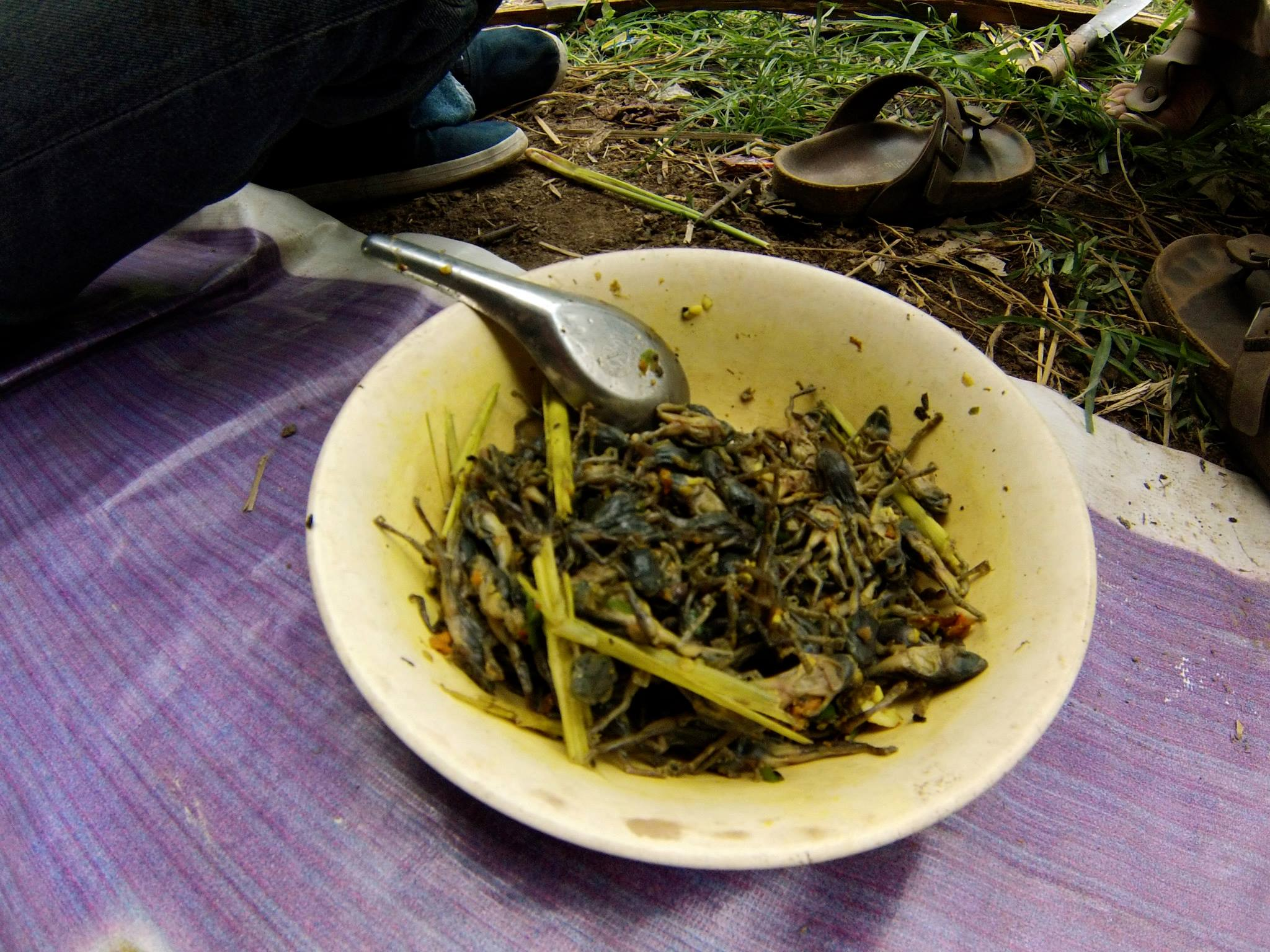 Dégsutation grenouilles ©Food Sweet Food