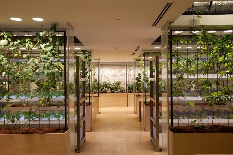 27-urban-farm
