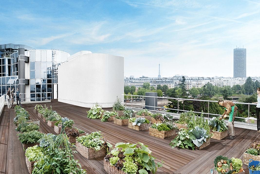Ville nourricière toits