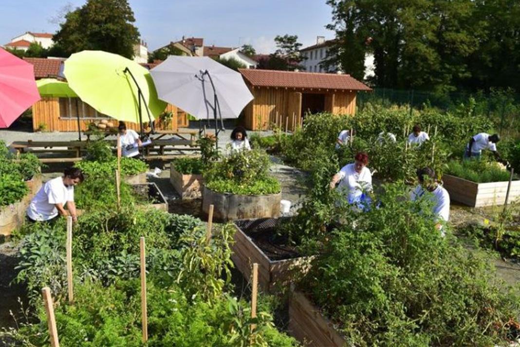pralus cre un jardin dentreprise en permaculture et a fonctionne - Jardin Permaculture