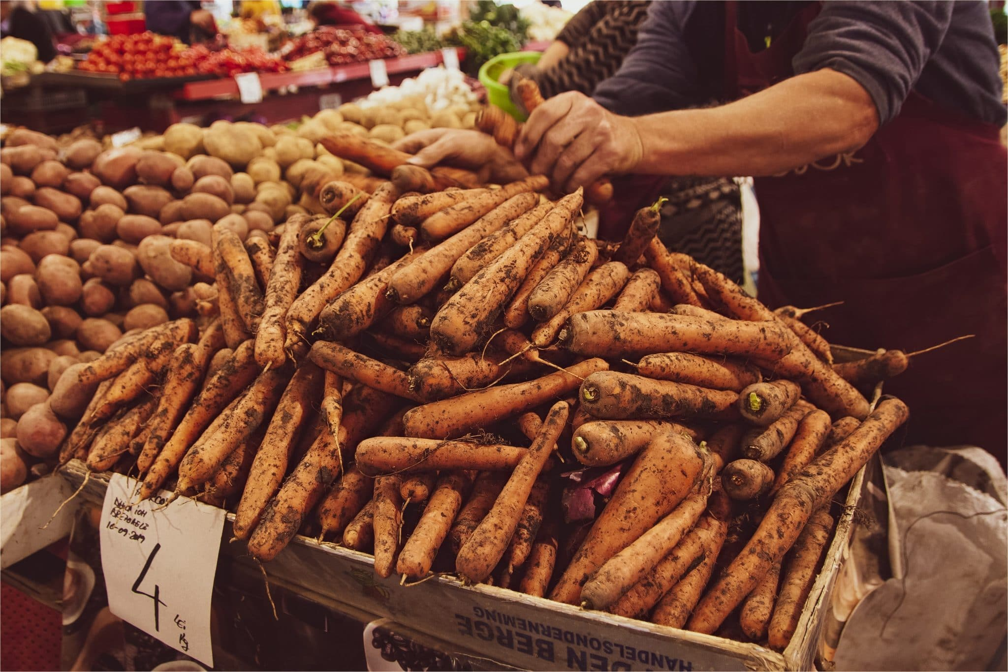 resilience-alimentaire-carottes